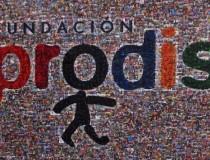 Logotipo de la Fundación Prodis
